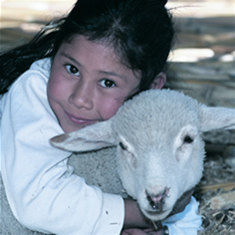 heifer international gift of livestock
